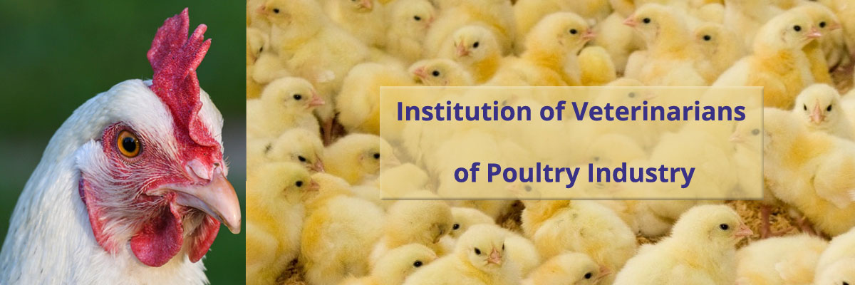 Institution of Veterinarians of Poultry Industry